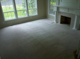 Mold Removal Portland, OR - After Mold Removal picture of bedroom carpets and floor results