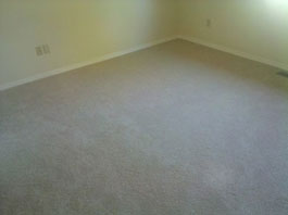 Mold Removal Portland, OR - After Mold Removal picture of bedroom carpets and walls results